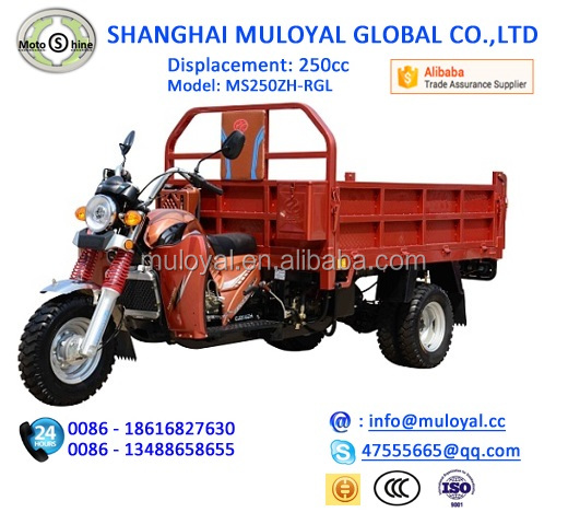 250cc Best Selling China Moto Tricycle Cargo Three Wheel Diesel Motorcycle