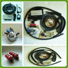 /product-detail/cng-lpg-ecu-for-sequential-injection-system-1919178035.html