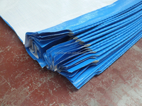 plastic honeycomb cardboard sheet tarpaulin HDPE material blue/white colour good quality cheap facotry directly hot sellwateroof