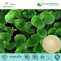 Gotu Kola Extract Triterpenes 10%-80%