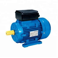 250w Asynchronous single phase water pump 2800 rpm electric induction motor