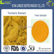 top quality curcuma extract powder 95% curcuminoide