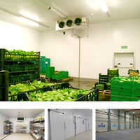 fire class cold room price for vegetable and fruit