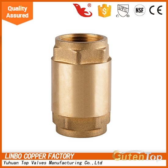 Back Pressure Brass Check Valve with Brass Core