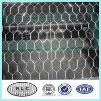 25mm cheap chicken wire/rabbit wire mesh/galvanized hexagonal wire mesh