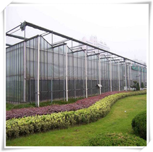 Strawberry greenhouse farming