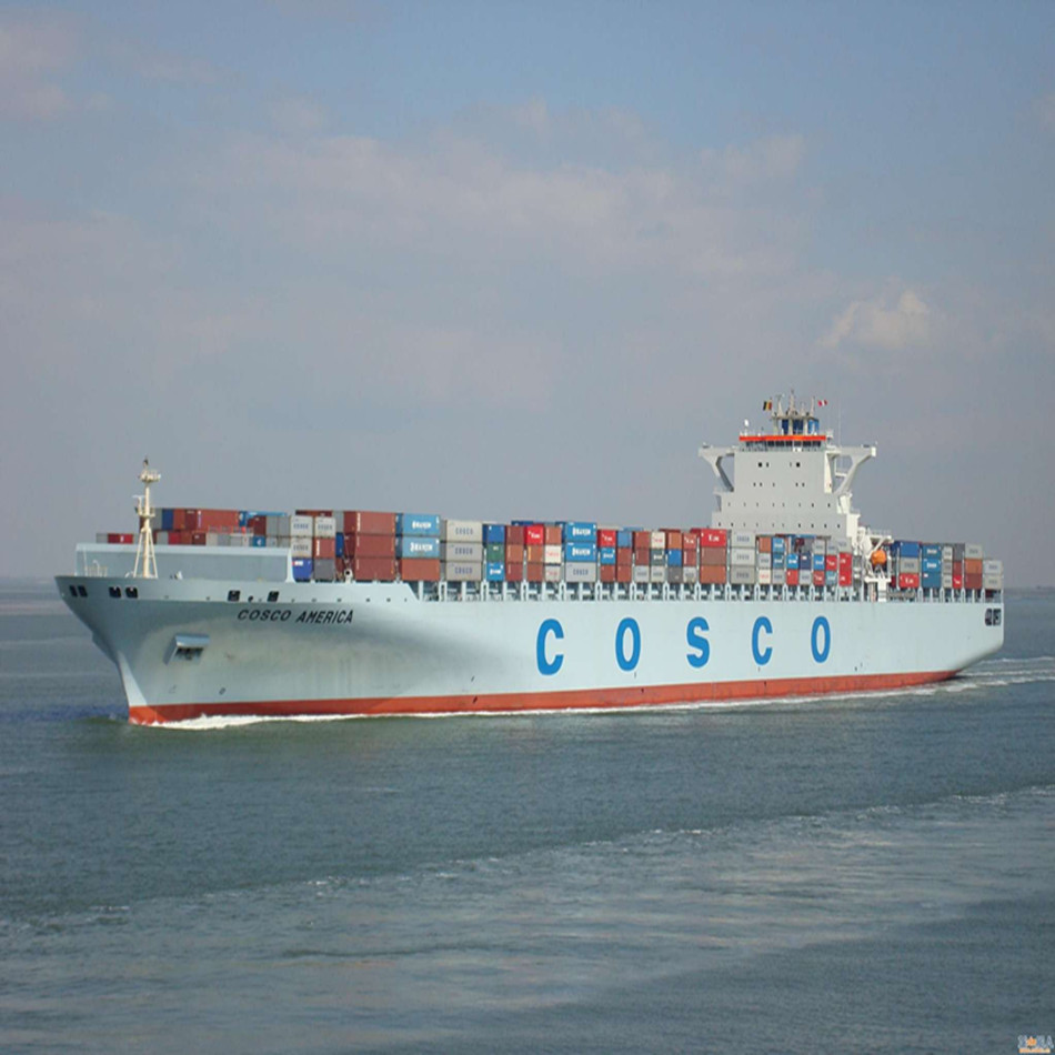 Top Shipping Alin--senstive goods sea transportation to San Francisco from China logistics