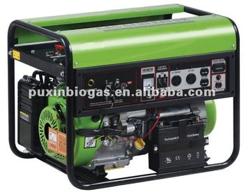 Excellent and durable Biogas generator(for new clean energy)