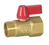 Forged Brass Mini Ball Valve(MxF)