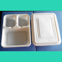 disposable biodegradable dinner plate with a lid made in China