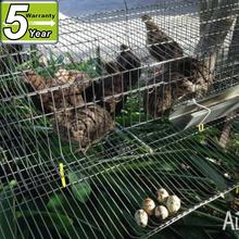 wire mesh cage use commercial quail cage for zimbabwe farm