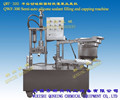 QWF-300 cartridge silicone filling machine silicone filling machine