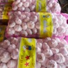 /product-detail/nature-garlic-wholesale-normal-white-garlic-for-wholesale-60811560331.html