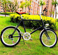 new style mini alloy frame dutch classic city lady adult fixed gear bike matte black baking finish bicycle/bike sell in