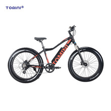 Heigh speed popular adult fat electric mountain bike