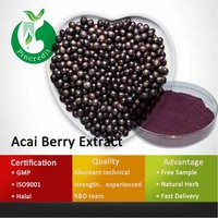 Organic Acai Berry/Acai Berry Juice/Acai Berry Powder