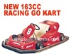 NEW 5.5HP 163CC RACING GO KART/BUGGY(MC-485)
