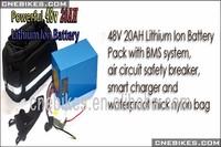 48v 20ah lifepo4 battery pack electric bike lithium battery pack