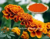 Marigold Extract -Lutein98% (Xanthophyll)