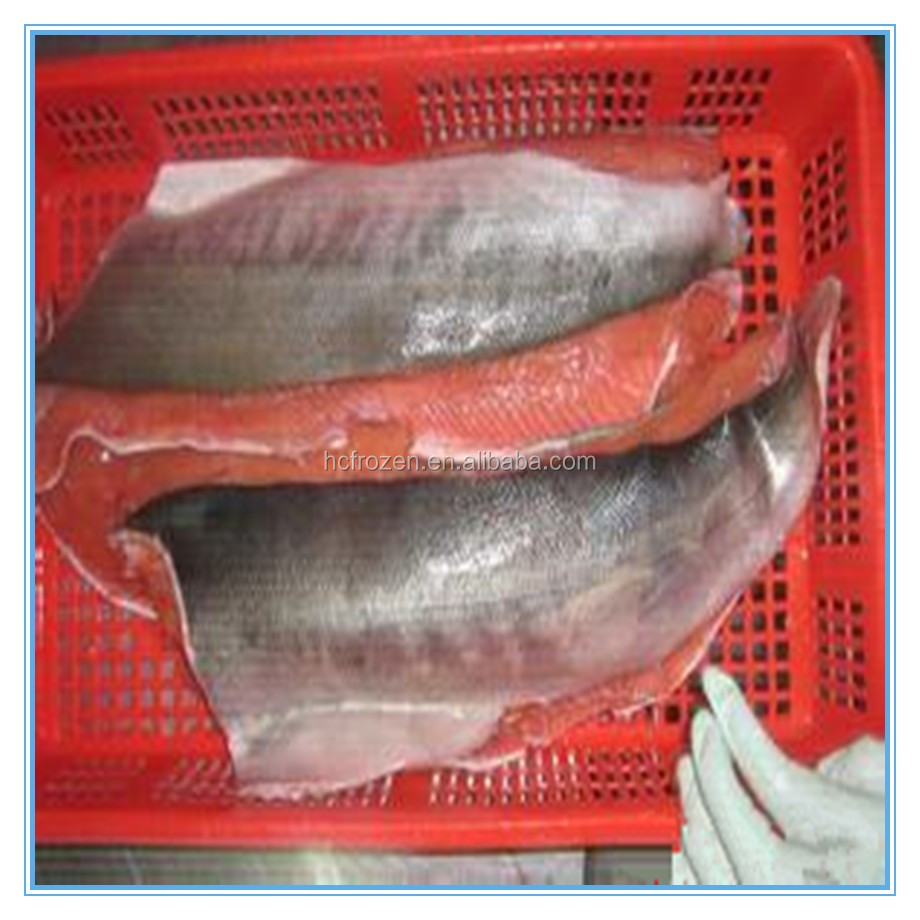 Hot sale New Season Frozen Salmon fish /fillet