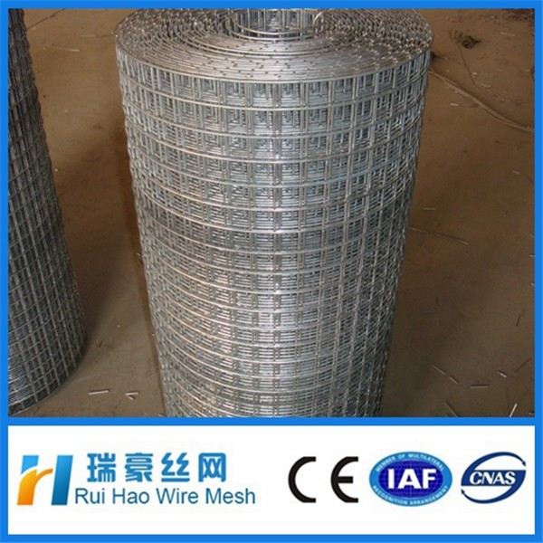 "1/4"" 1/2"" 3/4"" 1"" 2"" PVC coated welded wire mesh"