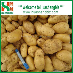 2017 Organic fresh potato/potato plant base/potato processing factory