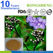 High Quality Pure Boneset Herb P.E.
