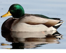 dongguan factory offer foam used duck decoys