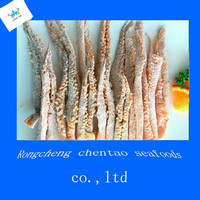 tangyang squid tentacle from china with powder