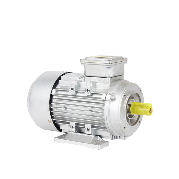 Three-phase Asynchronous Induction Motor Motor,2500kw Three Phase Induction Motor
