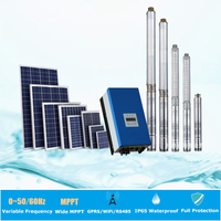 irrigation solar water pumps