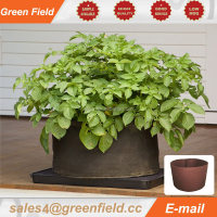 Hydroponic Planter Pot For Home Garden