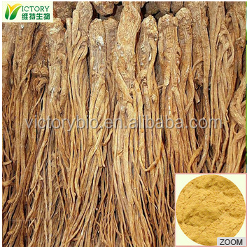 Angelica archangelica Root extract Angelica Dong Quai Extract 1%