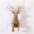 Deer head animal sculpture home decor gift idea