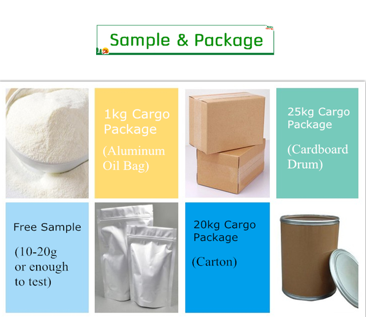 Wholesale Best Glucomannan Supplement Konjac Jelly Powder