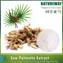 2015 New product Extract Saw Palmetto