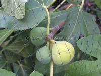 Various cereal and oil crops covering net, plastic vegetables/melons birding netting