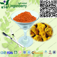 High quality 95% Turmeric Extract/ Curcumin