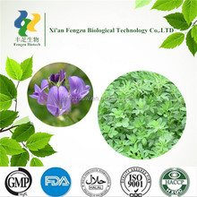Factory price Chinese Herbal Extract alfalfa extract 5%,20%,50% Saponins