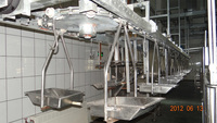meat processing machine with slaughter beef