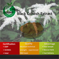 100% Organic Black Cohosh Powder Black Cohosh Extract