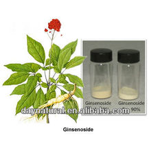 red ginseng extract liquid / ginseng extract powder with Ginsenosides 10%-98%