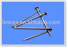 galvanized common nails/metal nails/price per kg iron nail china