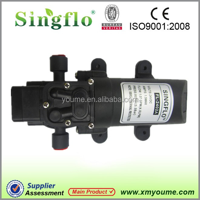 Singflo hot sale 12V DC small electric water pump for agiculture