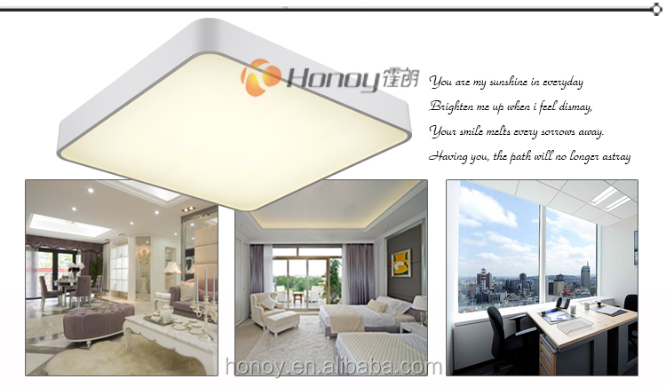 TUV/CE/Rohs approval Zhongshan lighting factory modern designer decorative indoor ceiling light