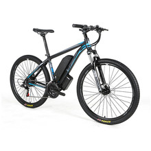 OEM 36v 250W-1000W cheap mtb mountain electric <strong>bike</strong> with disc brake