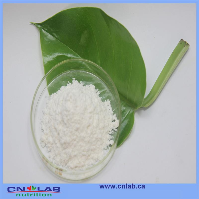 GMP/ISO/HALAL stevia bio good supplier from China