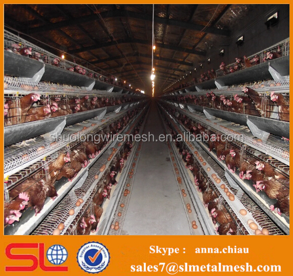 sheds for poultry farm / poultry farm house / poultry battery cage for nigerian farm