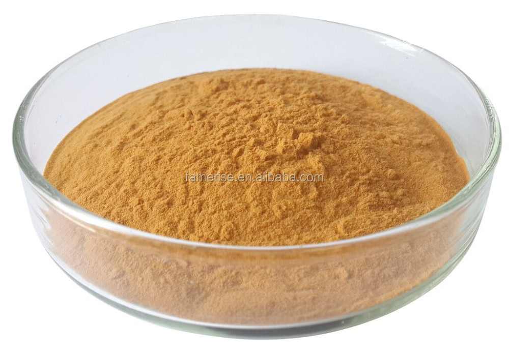 Professional bacopa monnieri extract bacopasides made in China