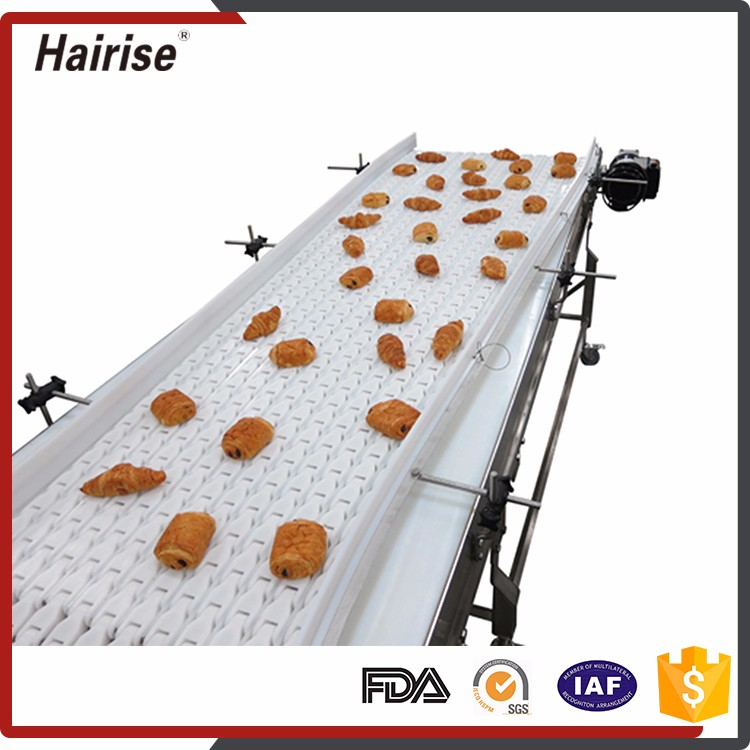 Professional Manufacturer Supplier Straight Conveyor Belt Systems